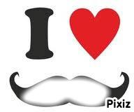 Moustache 300