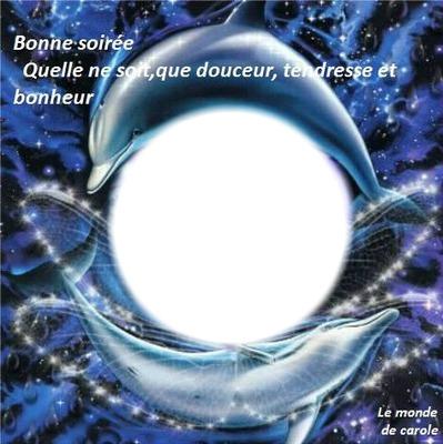 Dauphins autour d'une boule de crystal