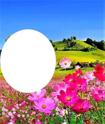 paisaje floral