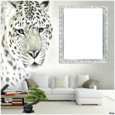 renewilly tigre y foto