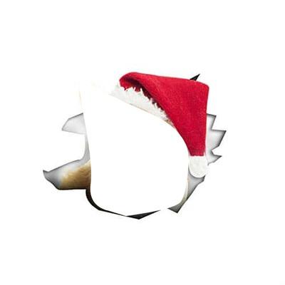 chapeau Noël