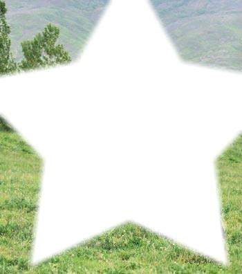 cheval dans une étoile