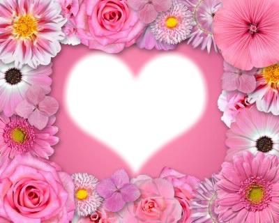 cadre fleure rose