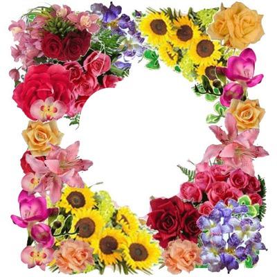 bonjour fleuri