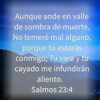 salmo 23 : 4
