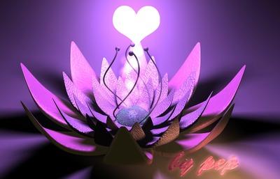 montage photo fleur de lotus pixiz. Black Bedroom Furniture Sets. Home Design Ideas