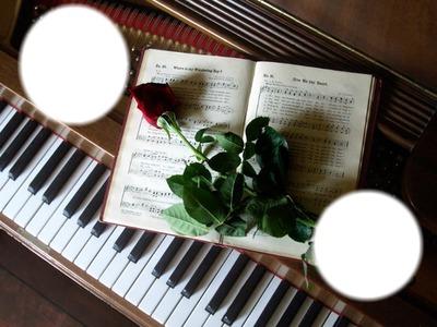 Montage photo rose sur un piano - Pixiz