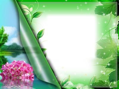 Cadre - feuilles vertes - lac - fleur rose