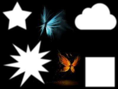 les papillons bleu et orange