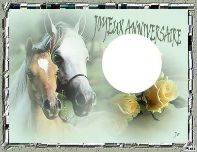 carte anniversaire avec cheval