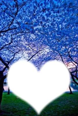 paysage+coeur