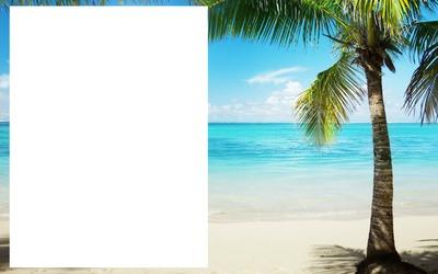 Beach cadre