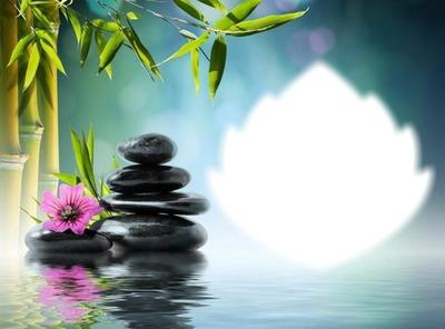 Zen-pierres-bambou-fleur rose