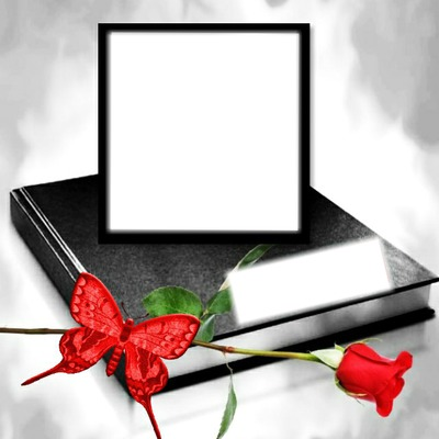 cadre de roses rouge