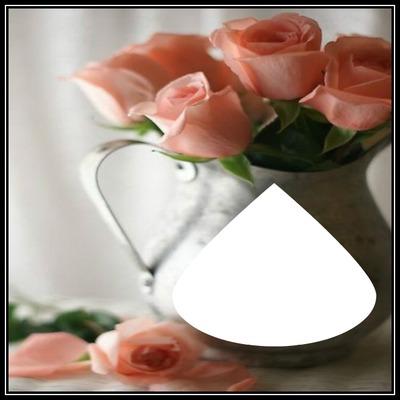 cadre de rose 1 photo