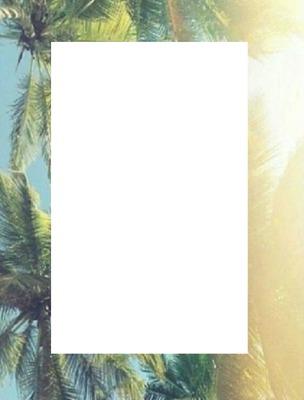 cadre palmiers
