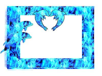 cadre dauphin cherine