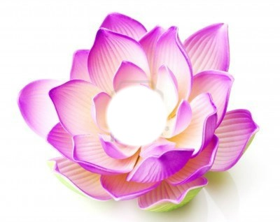 fleur (lotus)