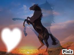 cheval en 3d