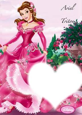 cadre de princesse belle