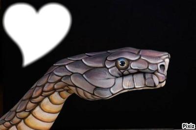J'aime les serpents