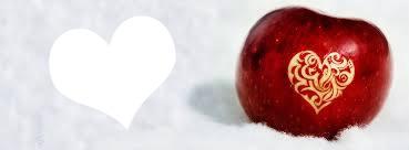 1 photo avec fond pomme dans la neige