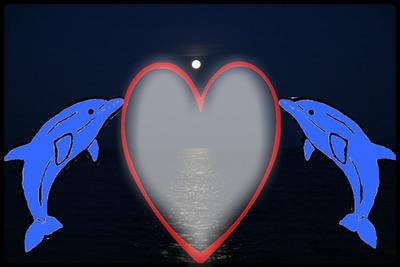 montage dauphins et coeur