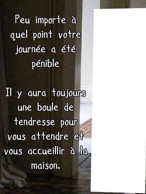 Photo Montage Poème Chien Pixiz