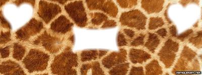 Capa de pele  girafa
