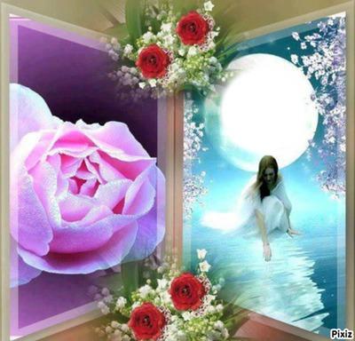 fleurs et lune