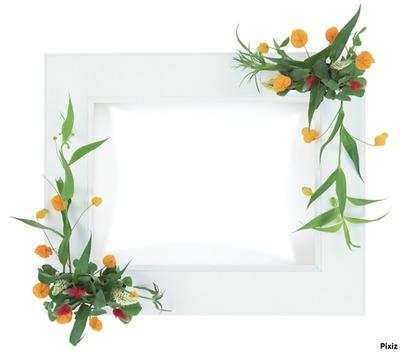 Cadre décoratif fleur