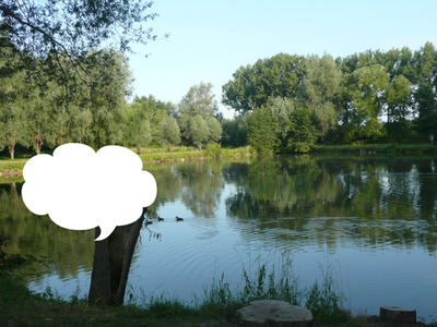 étang de rêve à Biezeveld