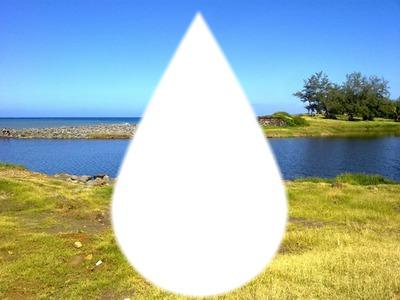 Goutte d'eau au milieu de la savane.