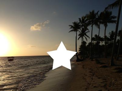 que c' est beau le coucher de soleil près des palmiers