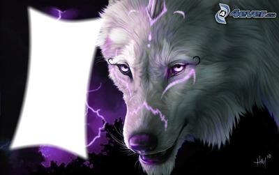 loup éclaire
