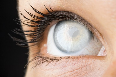 olho / eye / ojo / oeil