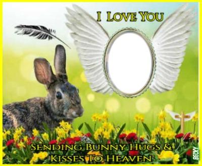 easter bunny hugs n kisses