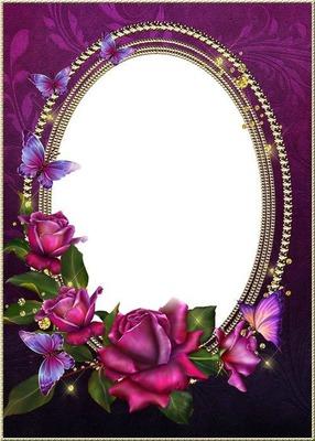 Cadre-fond mauve-roses-papillons