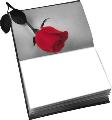 livre noir et blanc rose rouge