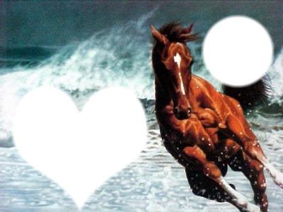 chevaux ds la mere
