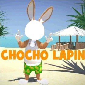 Chocho lapin