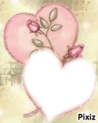 rose des coeurs