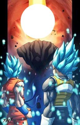goku et vegeta en super guerriers divin