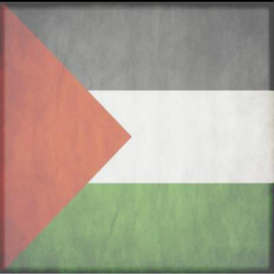 drapeaux palestine