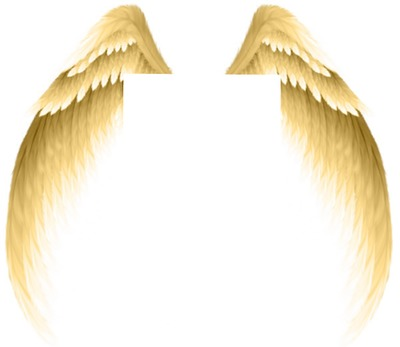 ANGE-L