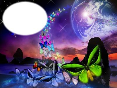 Papillons autour du monde