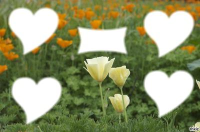Fleu 4 coeur et 1 toile