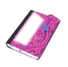 Marco de diario de violetta