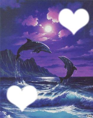 mes dauphins