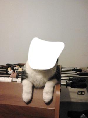 Le chat da le baby-foot